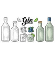 glass and bottle gin and branch juniper vintage vector image