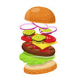 hamburger ingredients image vector image