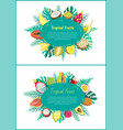 tropical fruits banner with exotic food oval frame vector image vector image