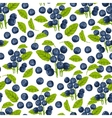 Blueberry seamless pattern vector image vector image