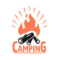 camp fire icon bonfire burning sign vector image