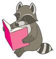 cartoon raccoon reading a big book vector image vector image