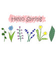 cute doodle flower with handwritten sign hello vector image