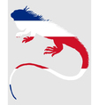 Iguana Costa Rica vector image vector image