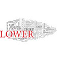 lower word cloud concept vector image vector image