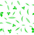 green soybeans seamless pattern vector image