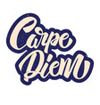 carpe diem lettering in graffiti style phrase on vector image