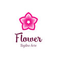 colorful flower logo design template vector image vector image