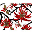 coral tree vector image vector image