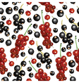 currant pattern vector image vector image