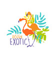 exotic logo design with flamingo birds colorful vector image