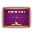 Horizontal royal certificate with lace pattern vector image vector image