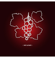Redcurrant in the Contours vector image vector image