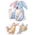 set of rabbit character vector image vector image