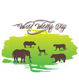 world wildlife day poster design vector image vector image