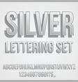 gray silver font vector image