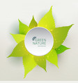 green leaves nature concept with label circle vector image vector image