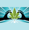 two hands holding on cannabis vector image vector image
