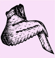 chicken wing vector image