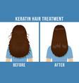 hair care keratin treatment vector image vector image
