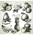 Hand drawn sketch fruit set Eco foods vector image vector image