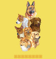 postcard with dogs of different breeds-7 vector image vector image