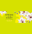 spring sale horizontal web banner poster with lily vector image