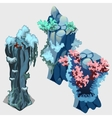 three underwater item reef with algae and starfish