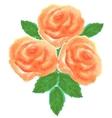 Three roses vector image