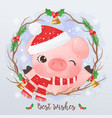 adorable little pig for christmas decoration vector image