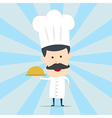 Chef serving food in the dish vector image vector image