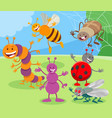 funny cartoon insects animal characters group vector image vector image