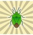 Insect sticker shield bug Palomena prasina vector image vector image