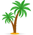 Palm tree tropical stock