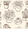 pattern with houseplants vector image vector image