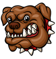 Angry guard dog house with head vector image