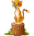 cartoon cheetah sitting on the tree stump vector image vector image