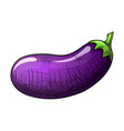 colorful sketch eggplant vector image vector image