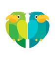 flat parrots set vector image