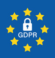 general data protection regulation padlock icon vector image