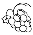 healthy grape icon outline style vector image vector image