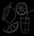 lemon with leaf slices and glass of lemonade with vector image