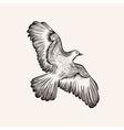 sketch bird Hand drawn vector image vector image