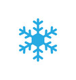 snowflake icon graphic design template vector image vector image