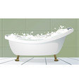 traditional bathtub vector image