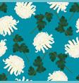 white chrysanthemum flower on indigo blue vector image vector image