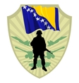 Army of Bosnia and Herzegovina vector image vector image
