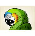 green parrot vector image vector image