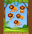 lion in nature sticker vector image vector image