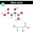 Malic acid molecule vector image vector image